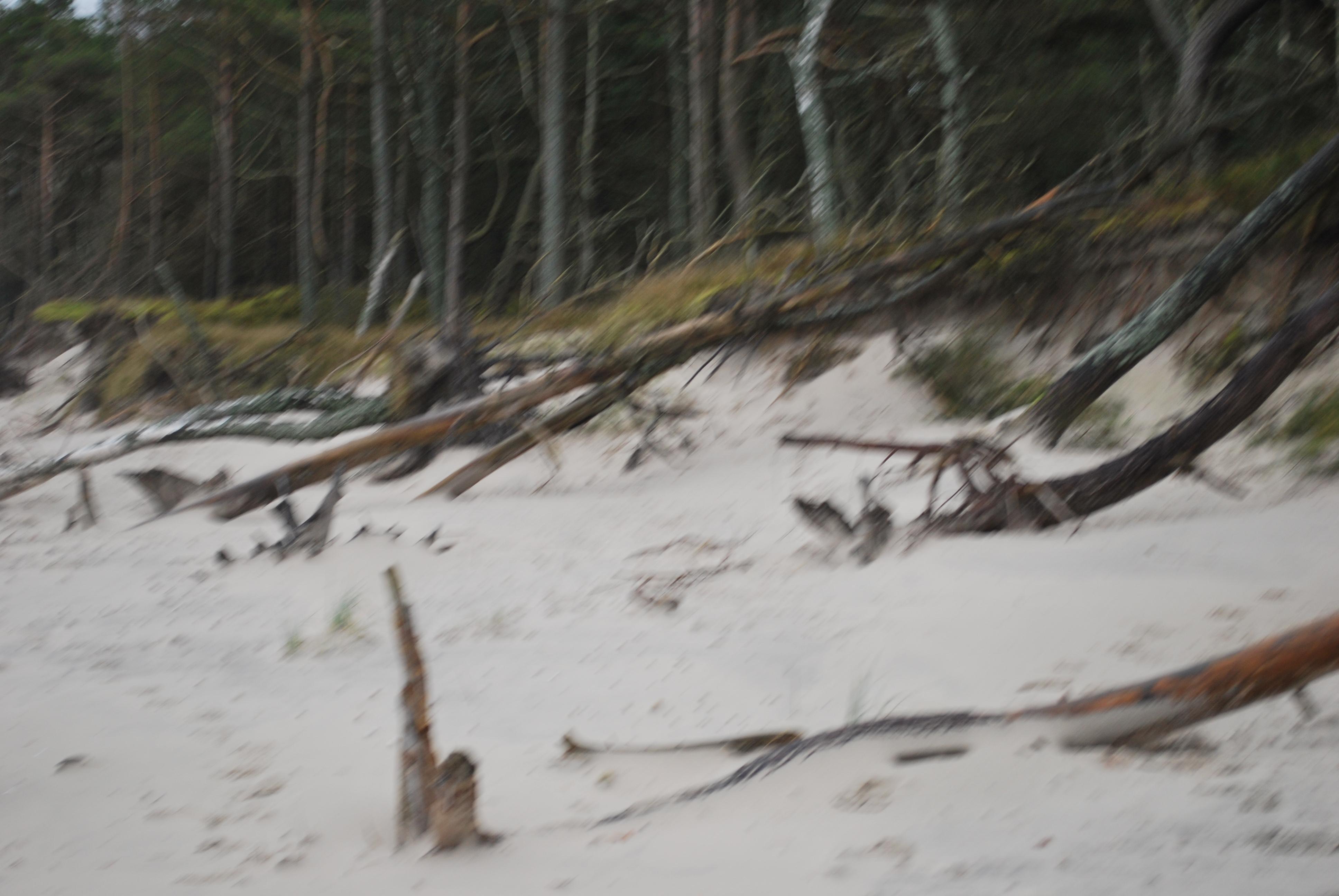 Łeba plaża