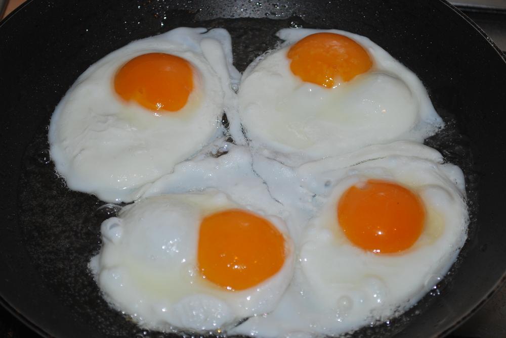 Jajko sadzone w Skrawku Nieba